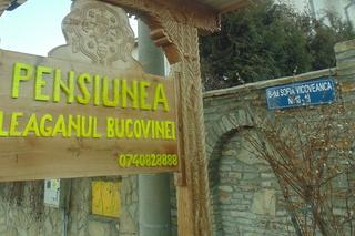 Pensiunea Leaganul Bucovinei